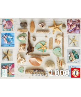 17658 - Puzzle Collage de Caracolas, 1000 piezas, Educa