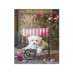 16272 - Puzzle Be My Valentine, 500 piezas, Educa