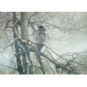 80037 - Puzzle Fantasma de la Noche, 1000 piezas, Cobble Hill