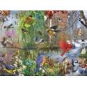 80243 - Puzzle Pájaros de Temporada, 1000 piezas, Cobble Hill