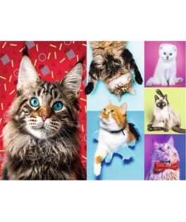 10591 - Puzzle gatos felices, 1000 piezas, Trefl