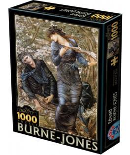 75024 - Puzzle La Seducción De Merlín, 1000 piezas, D Toys