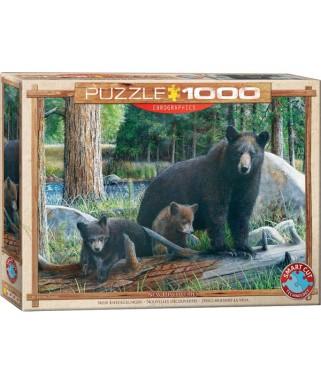 6000-0793 - Puzzle Descubriendo la vida, 1000 piezas, Eurographics