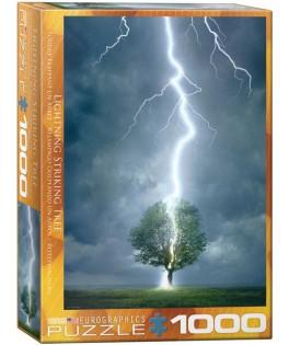 6000-4570 - Puzzle rayo golpeando árbol, 1000 piezas, Eurographics