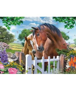 05388 - Puzzle caballos en la puerta, 1000 piezas, king International