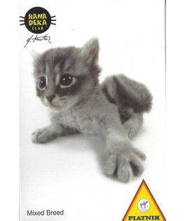 5017913 - Minipuzzle gatito Mixed Breed, 54 piezas, Piatnik