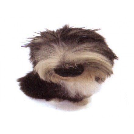 Comprar Minipuzzle Perro Bearded Collie