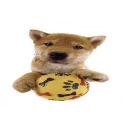 Comprar Minipuzzle Perro Shiba Inu