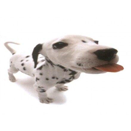 Comprar Minipuzzle Perro Dalmatian 2