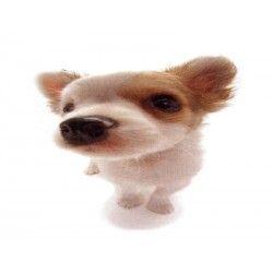 Comprar Minipuzzle Chihuahua 2